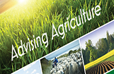 Greater Noida Agriculture