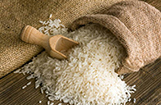 Greater Noida Rice Wholeseller