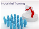 Industrial Training in Greater Noida
